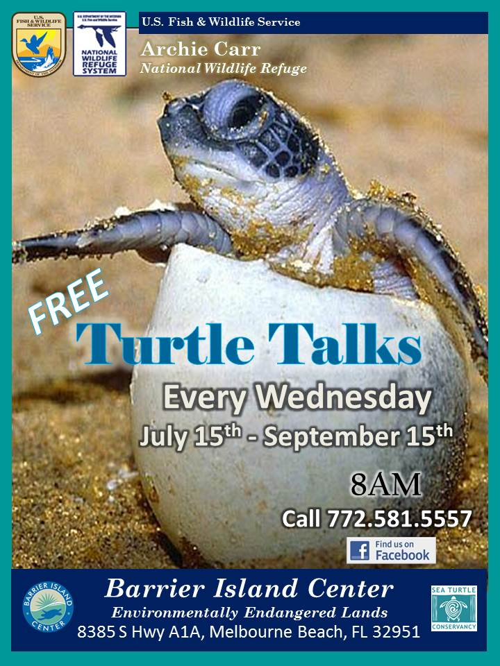 Turtle Talk Poster_2013_FINAL