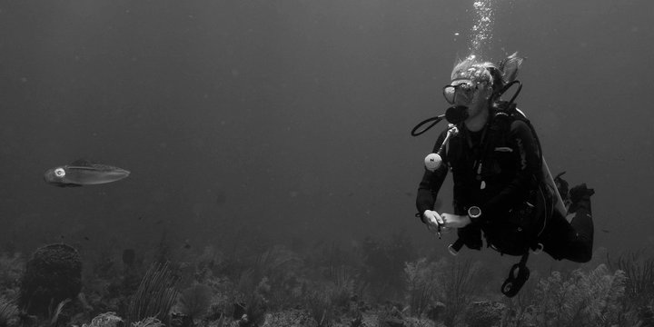 Savanna contemplates a squid while diving in Little Cayman Island
